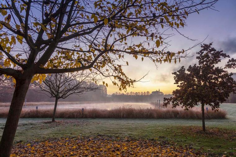 Giardini d'Inverno, Dario Fusaro
