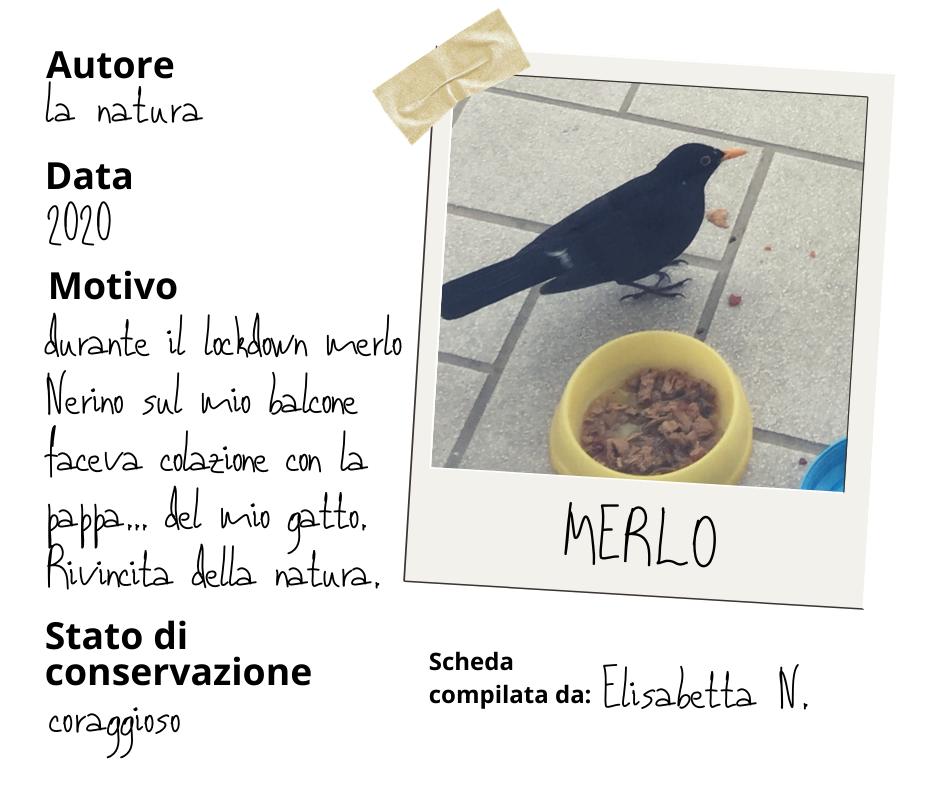 Merlo, Museo della quarantena
