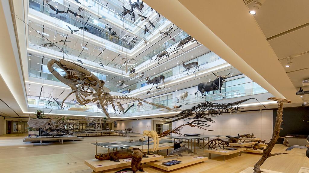 Interni del Museo delle Scienze di Trento